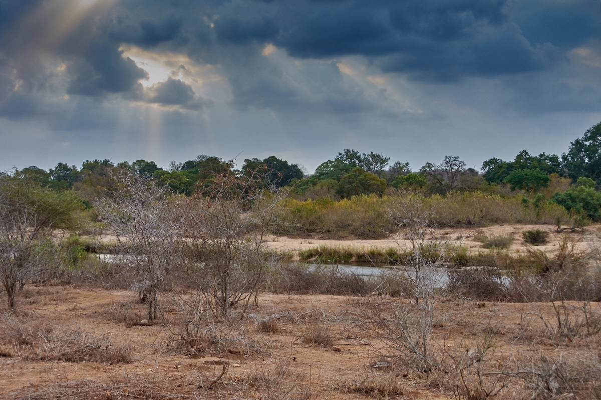 Sabie River, Kruger National Park